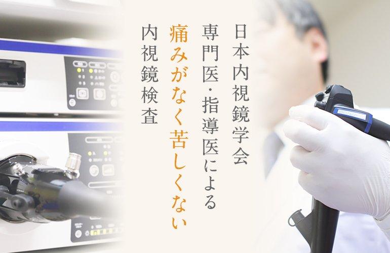 日本内視鏡学会専門医・指導医による痛みがなく苦しくない内視鏡検査